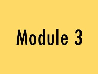 Module 3: Client Services – Addressing the Needs of Parents and Children